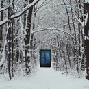 csm Narnia Khomenko Maryna shutterstock 367941221 9ebdeef5c1